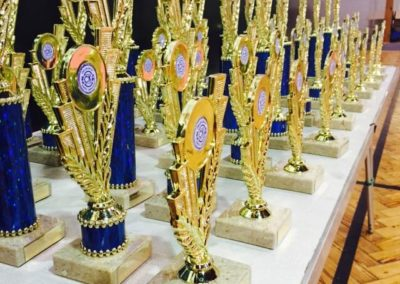Newton Longville & Wolverton Karate Events